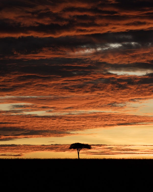 Dramatic Mara Sunrise - Clement Kiragu Photography