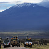 Clement Kiragu - Kilimanjaro - Photographic Safaris