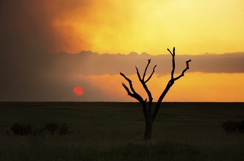 Sun goes down a smokey sky in Maasai mara Kenya as captured by landscape photographer Clement Wild