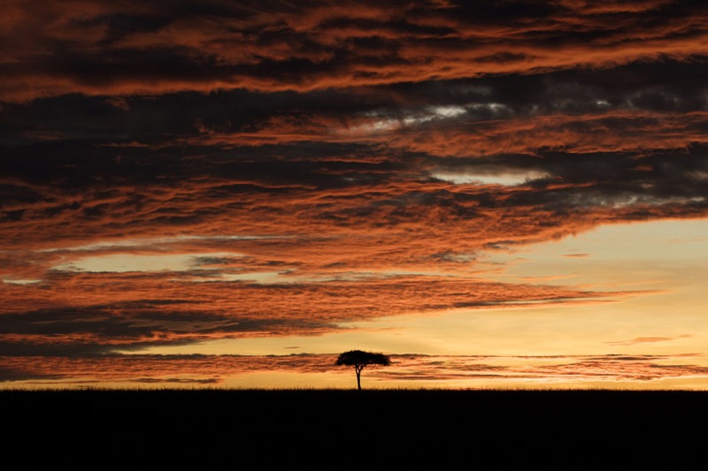Dramatic Masai Mara Sunrise landscape with thick clouds as captured by photo tour leader ClementWild
