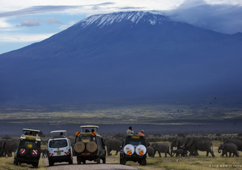 Tourists watching elephants with the backdrop of Mt Kilimanjaro photographed by Clement Kiragu