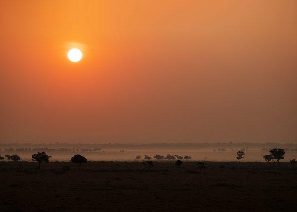 Mist as Sun rises in Maasai Mara