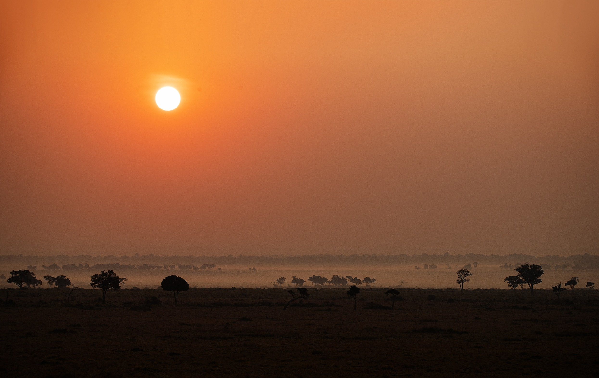 Mist as Sun rises in Maasai Mara